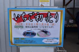 いなほてらすでいちごの初売りが行われます(埼玉県東松山市)